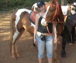 claire-and-her-horse