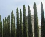 cabrieres-davignons-castle