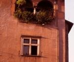 old-home-in-trastevere