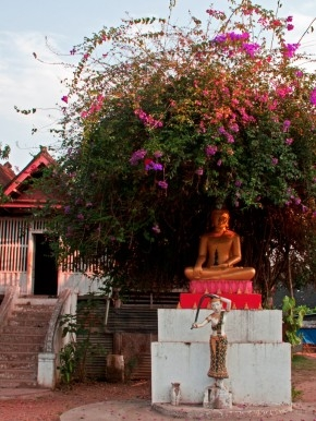 Buddha, bougainvillea and Nang Thorani