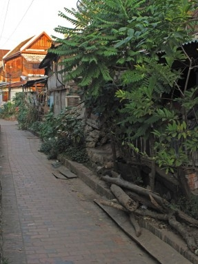 Firewood piled in an historic district lane