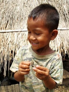 A boy taking great pleasure in pulling apart a cicada