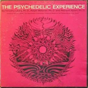 Art hippie et psychédélique - Page 5 The-Psychedelic-Experience-290x290
